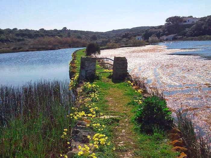 Camino mágico, Albufera Des Grau, Menorca