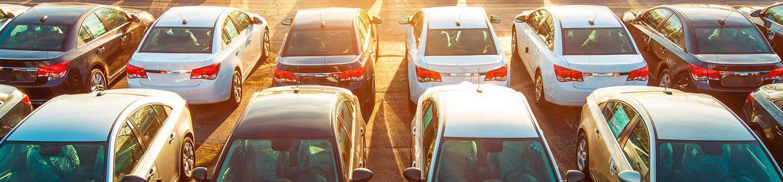 flota de coches de alquiler