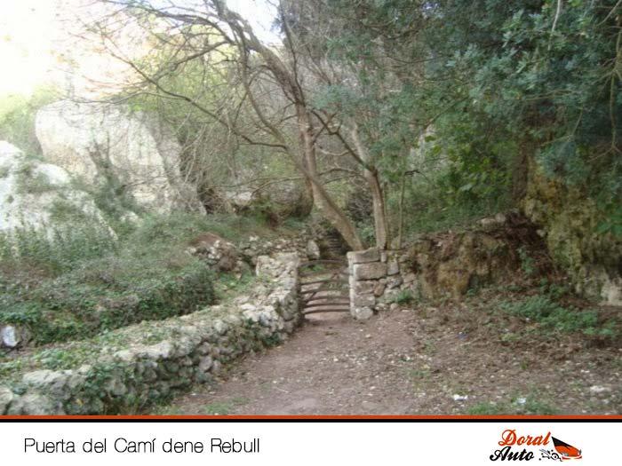 Puerta Cami