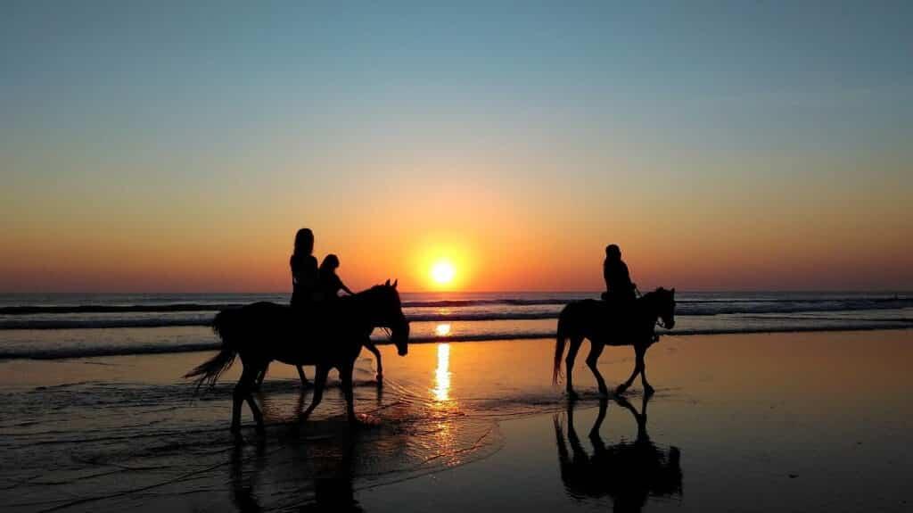 Balades à cheval