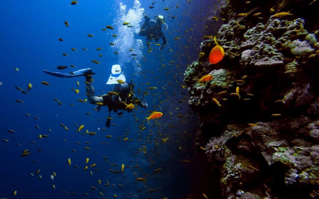 Como alquilar un coche en Menorca submarinismo